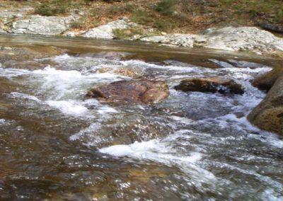 Le Tauron (vers la cascade)