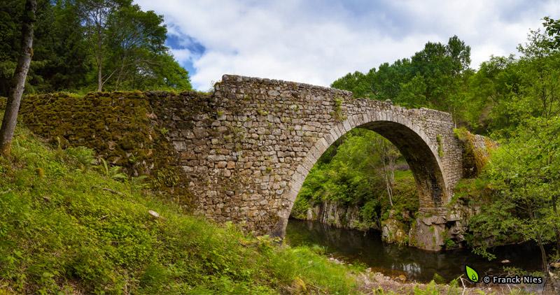 Pont sur le Gage (photo © Franck Nies)