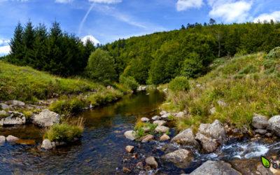 Rivière La Padelle
