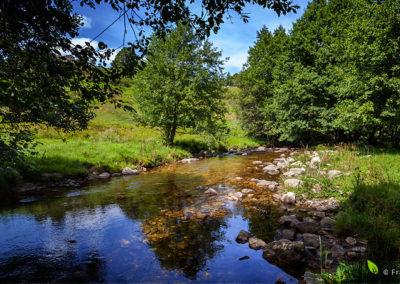 AAPPMA La Truite Capricieuse - Rivière Le Vernason